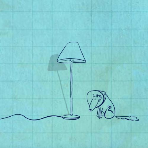 2d line animation of Dog & Lamp
