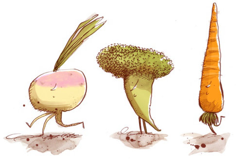 Vegetables illustration