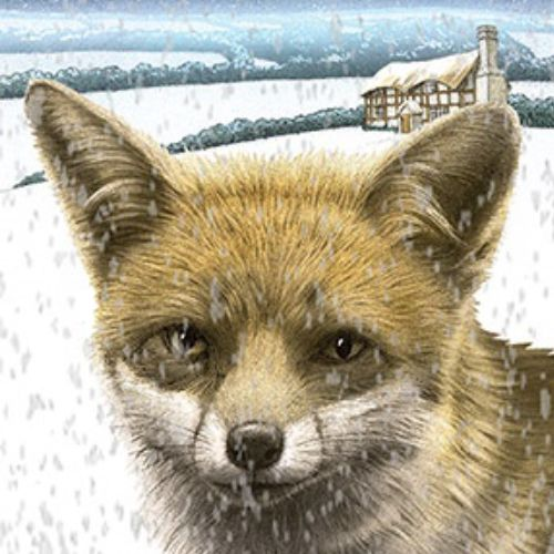 Fox in the snow, animation by Alan Baker