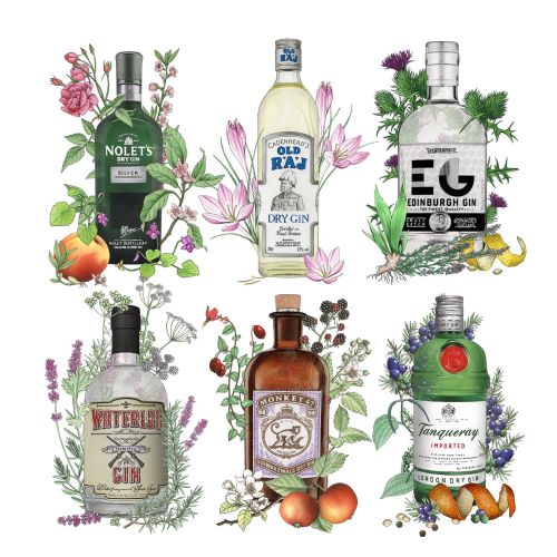 Gin bottles illustration by Alan Baker