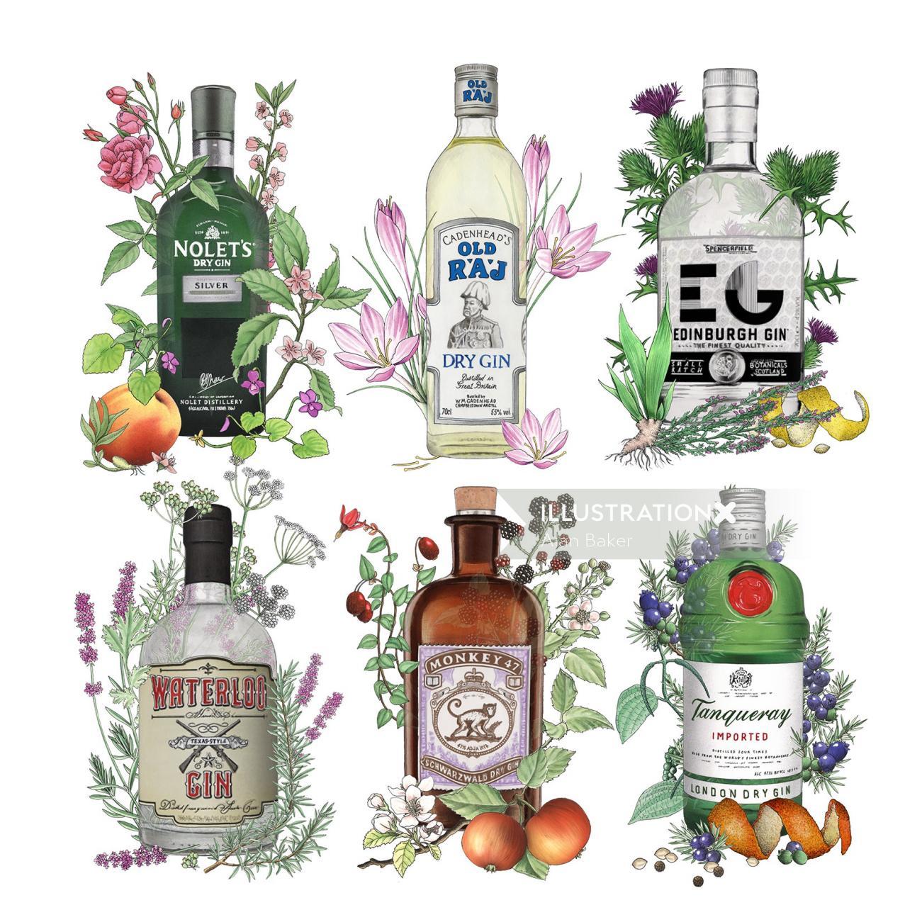 Gin bottles illustration by Alan Baker