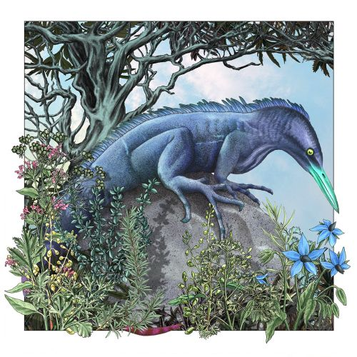 Graphical design of fantasy lizard with bird head