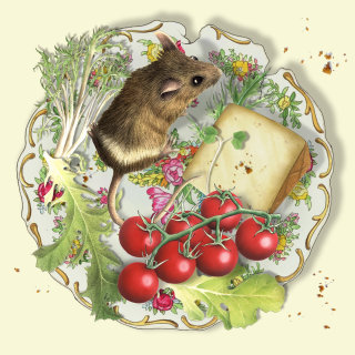 Graphical illustration of Mouse on plate