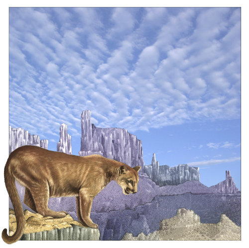 Illustration d'animal puma sur les rochers
