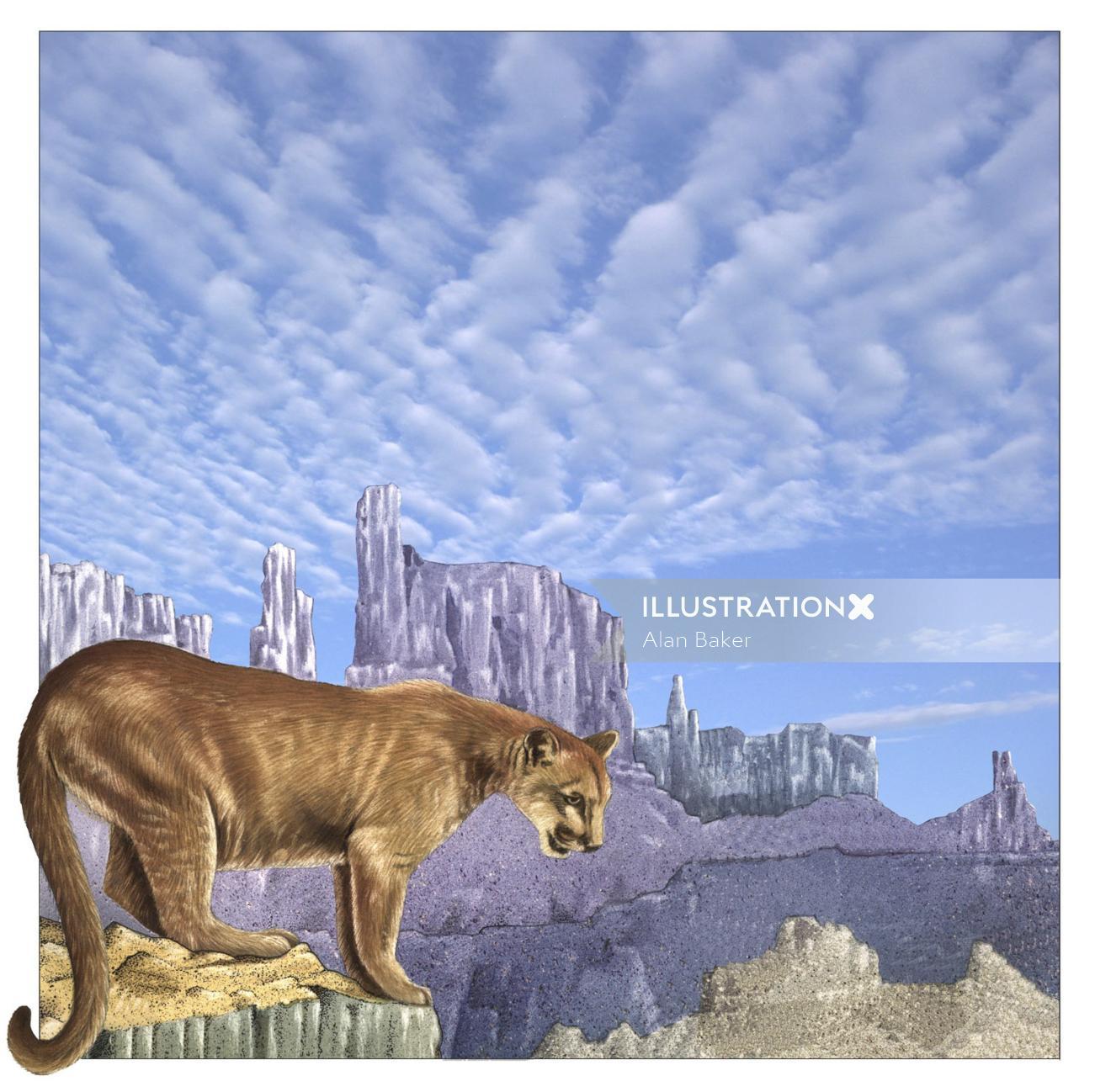 Illustration of puma animal on rocks