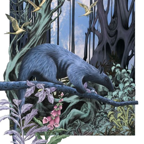 Wildlife fantasy - An illustration by Alan Baker