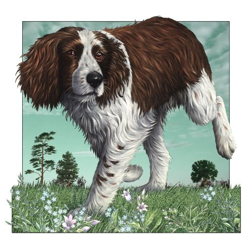 Dog illustration by Alan Baker