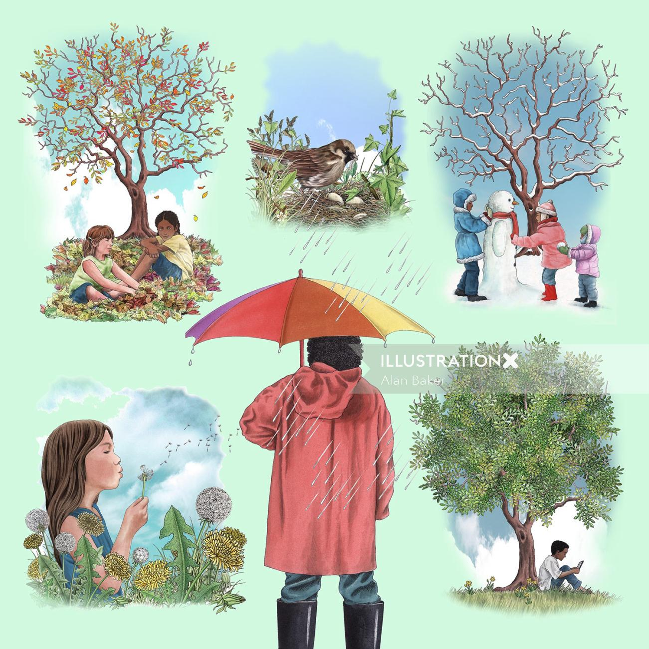 Four seasons illustration by Alan Baker