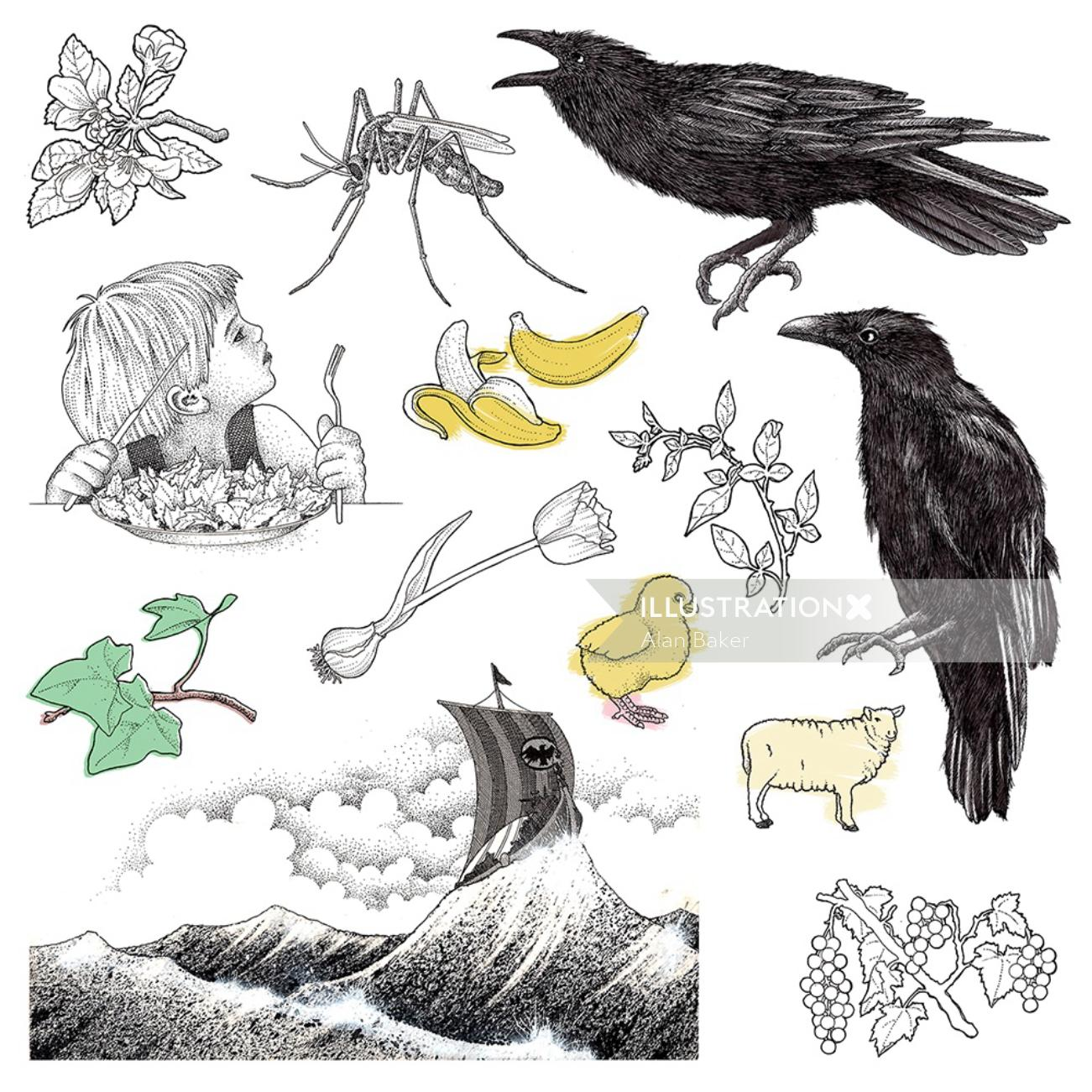 An illustration of birds and insects