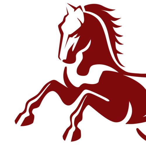 Logo Illustration of Horse