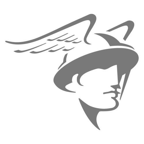 Grey colored logo illustration