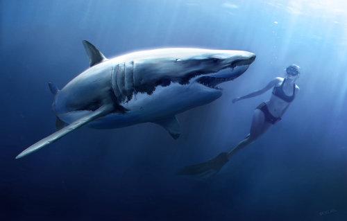 Una ilustración de mujer buceando con tiburón blanco