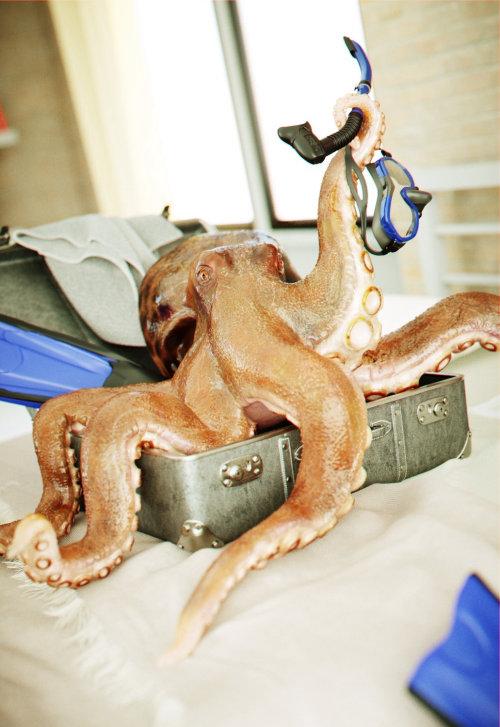Illustration photoréaliste d'Octopus