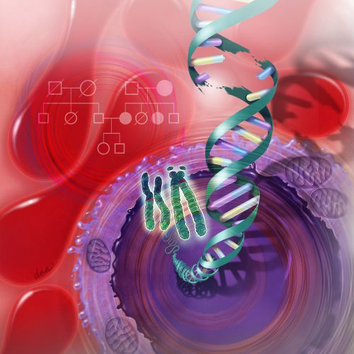 Medical illustration of Genetic Testing