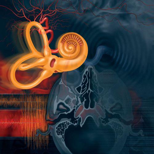 Medical illustration of Tinnitus