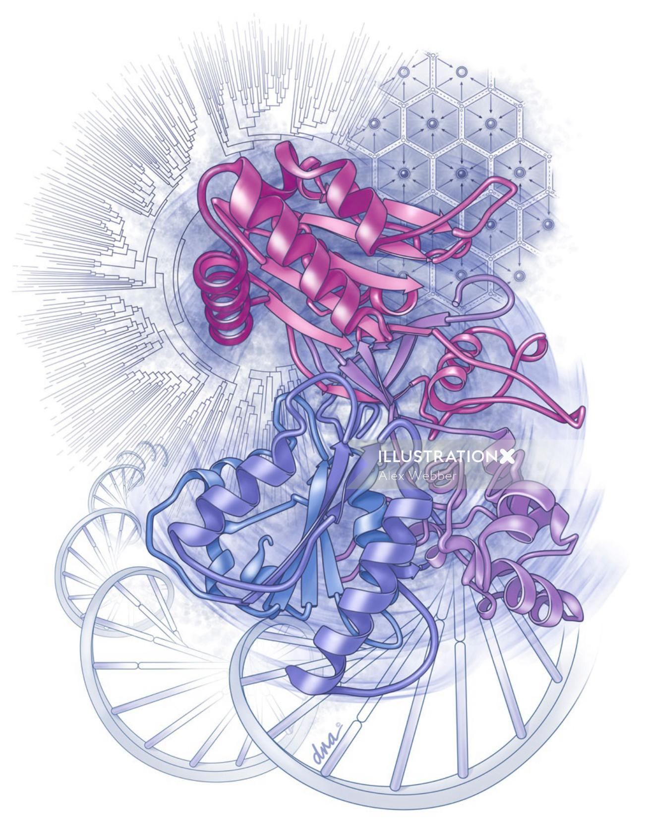 An illustration of Cytochrome P450