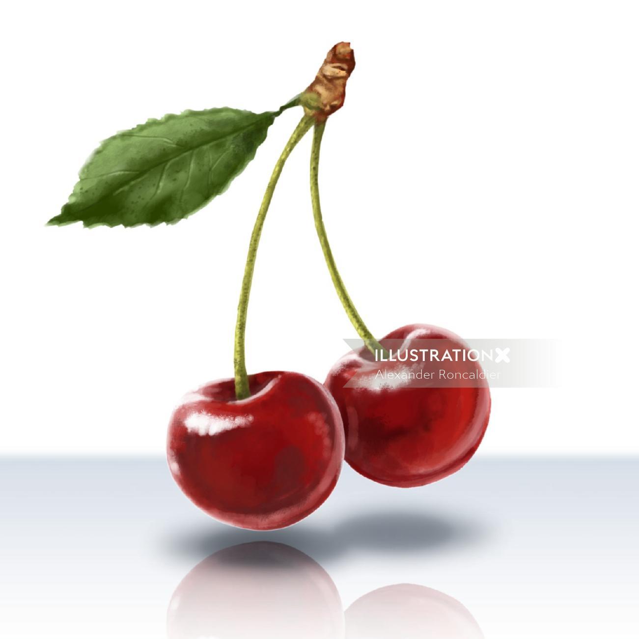 Infographic art of cherry's
