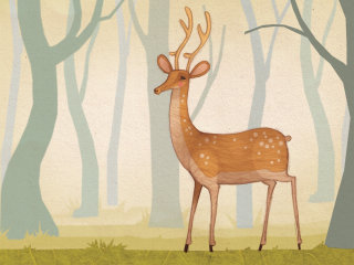Illustration of Deer in the woods, forest