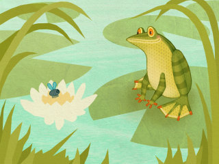 The Animals Of Mossy Forest App Frog