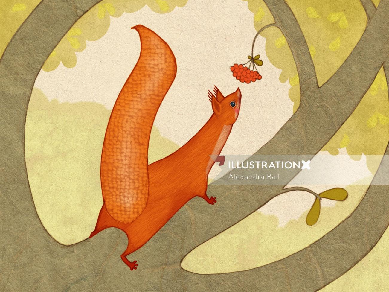 Alexandra Ball: The Animals Of Mossy Forest App: Squirrel