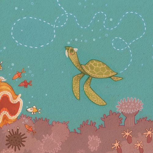 Princess Cruises, Clam & Turtle Illustration