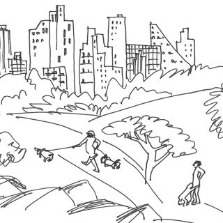 Line illustration of central park