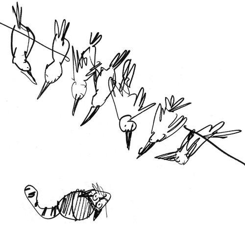 Aves observadas por gato - Uma ilustração de Alyana Cazalet
