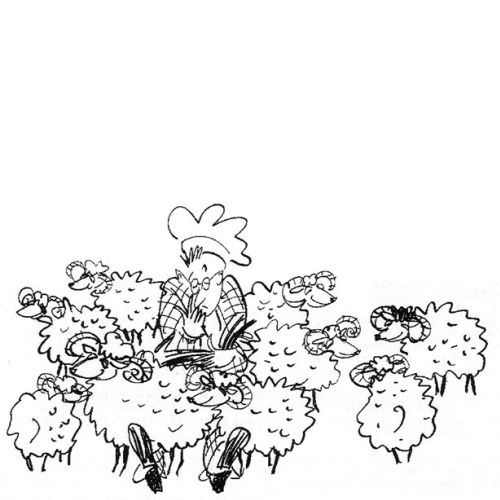 Cartoon sheep illustration by Alyana Cazalet