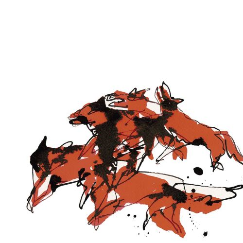 Foxes illustration by Alyana Cazalet