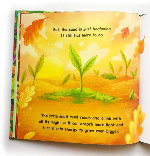 Livre pour enfants sur les plantes