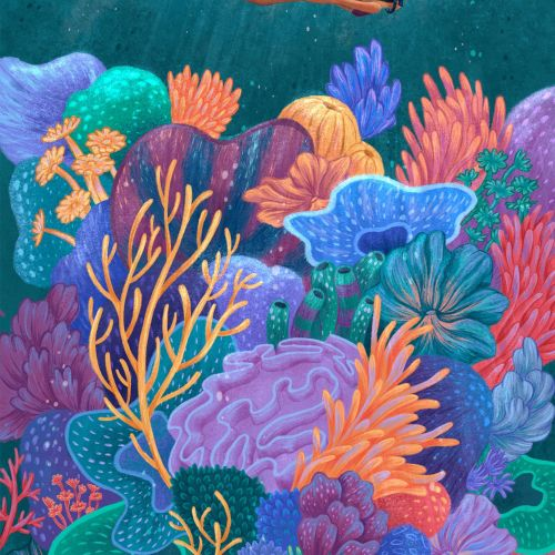 Scuba diving nature illustration