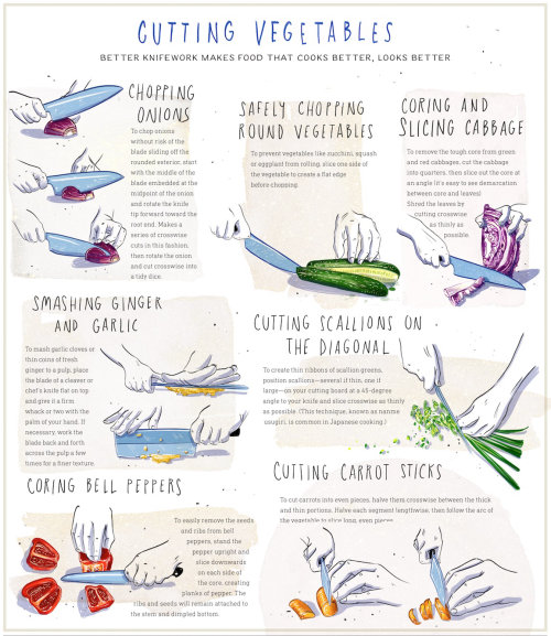 exotic, cuisine, food, diy, how to, infographic, technique, knife, asian, culinary, illustration