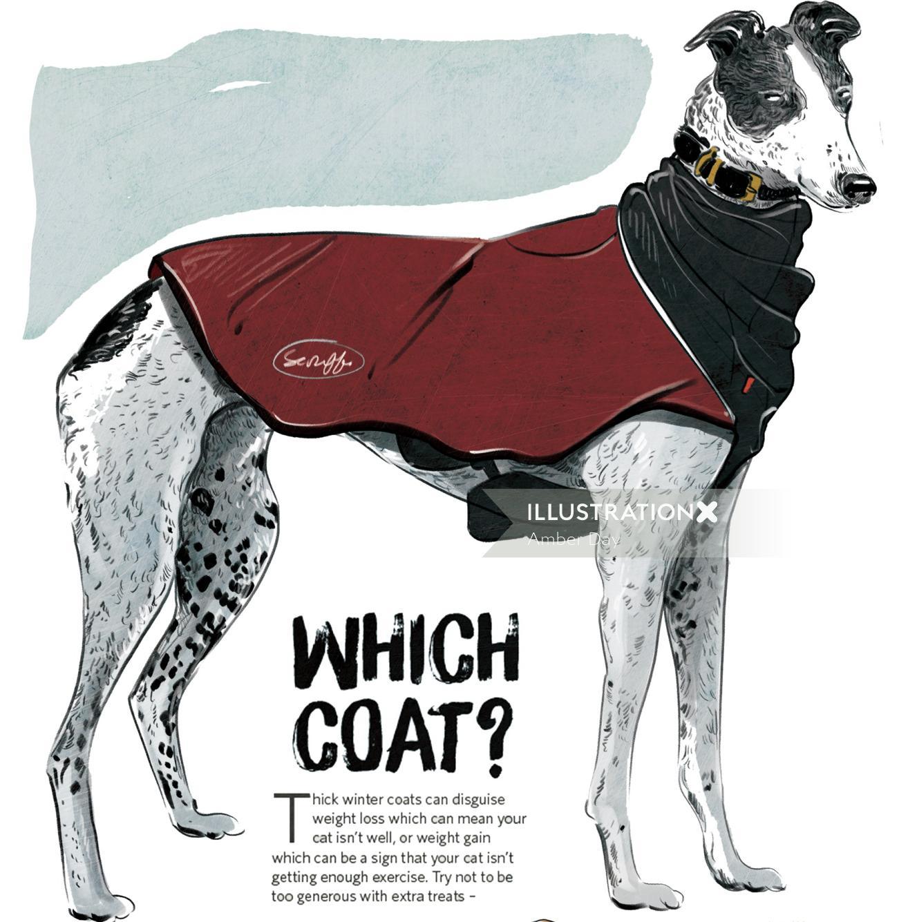 dog, pet, editorial, magazine, fashion, winter
