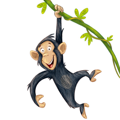 Monkey hanging on branch