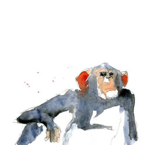 Loose illustration of monkey