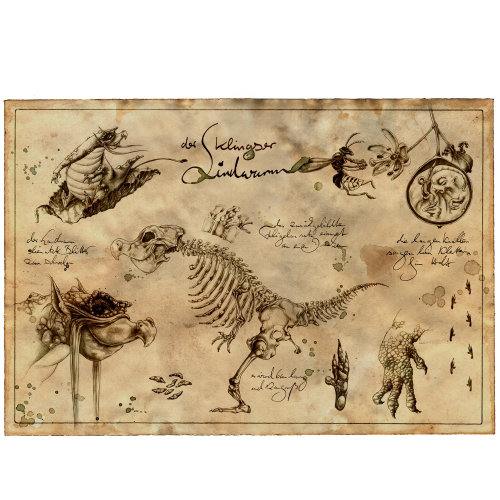 Line illustration of rare species