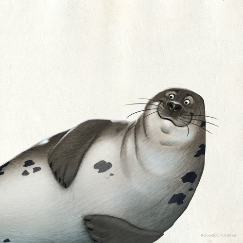 Animal character design of a sea lion