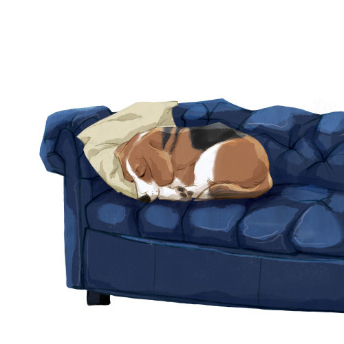 Dog sleeping on a couch illustration