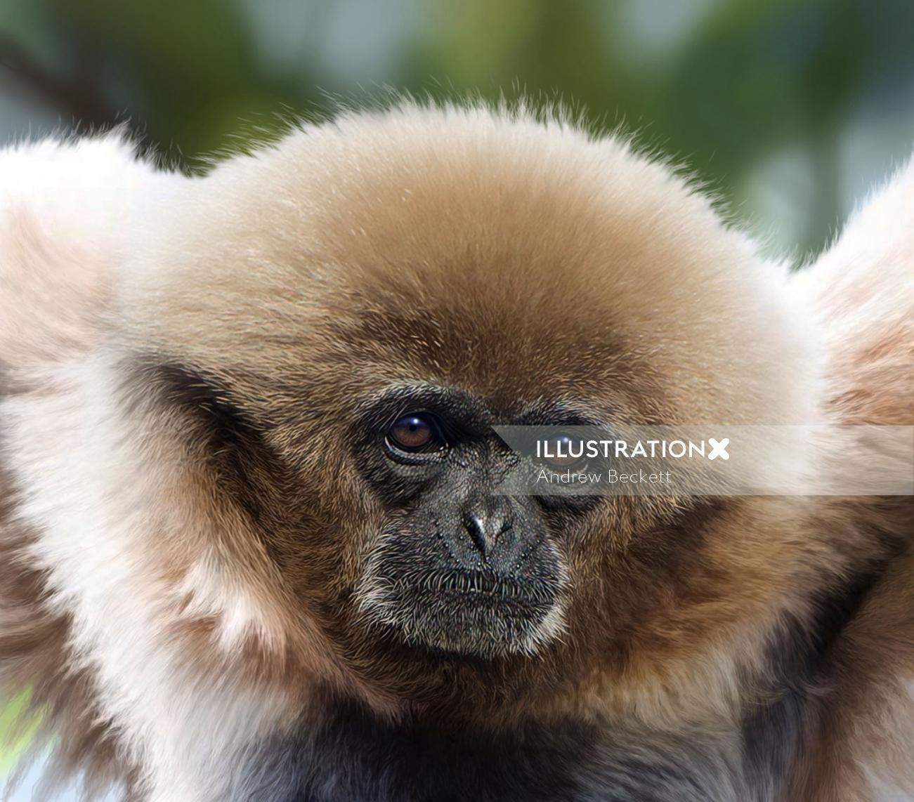 White-handed Gibbon digital art for Jersey Post