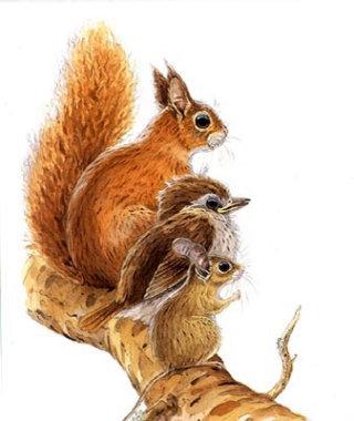 Bird & rabbits on tree branch illustration