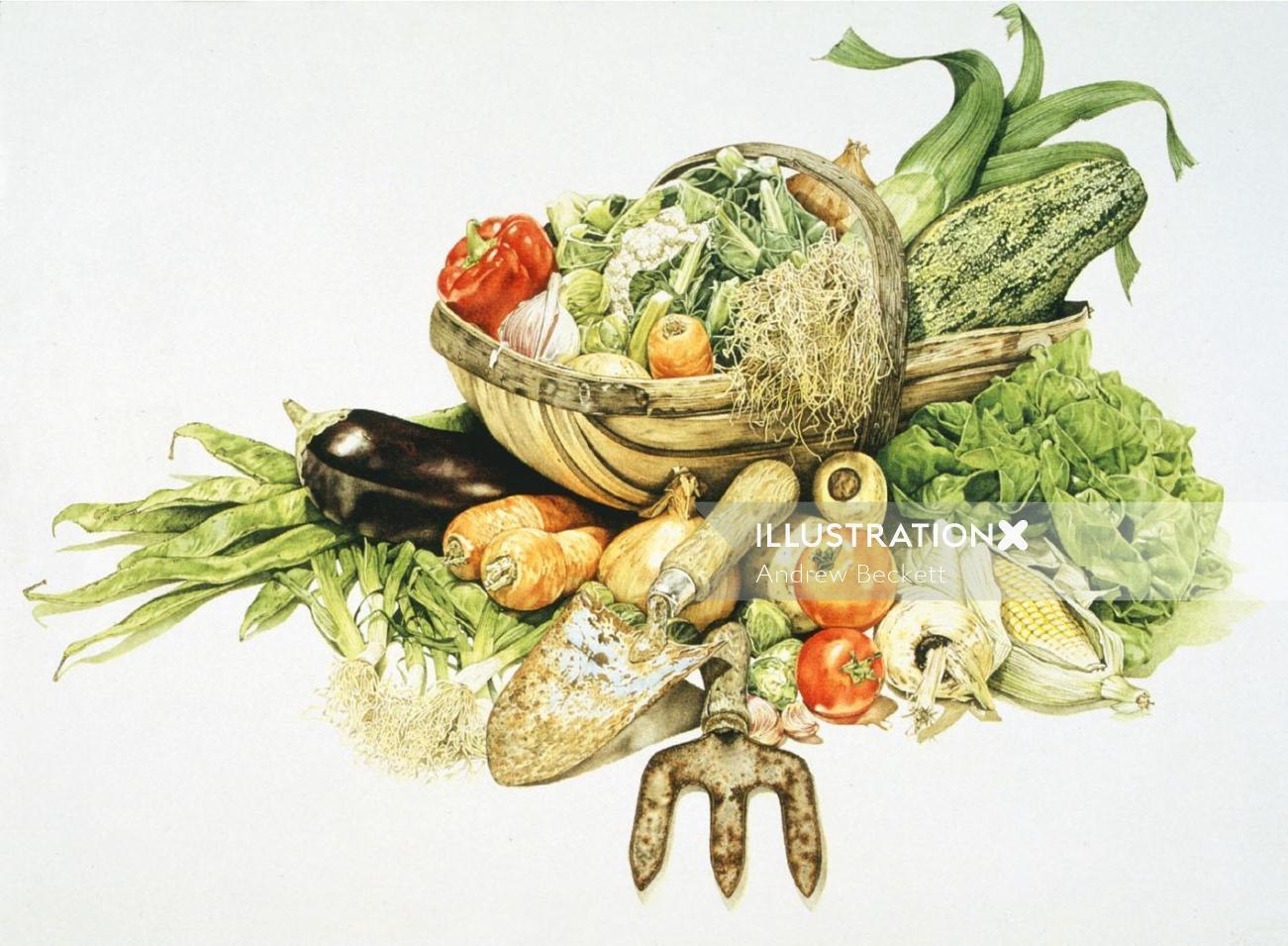 Graphical illustration of vegetabuls