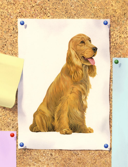 Labrador Retriever dog illustration by Andrew Beckett