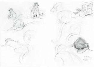 Black and white art of Ring-tailed Lemur