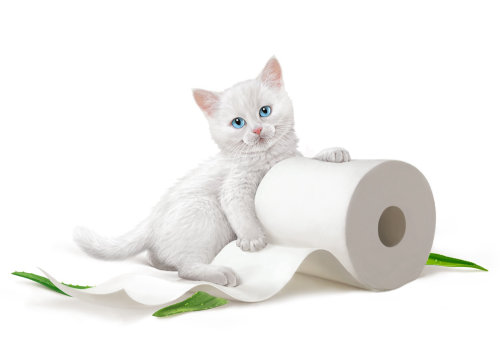 Kittensoft toilet tissue illustration by Andrew Beckett