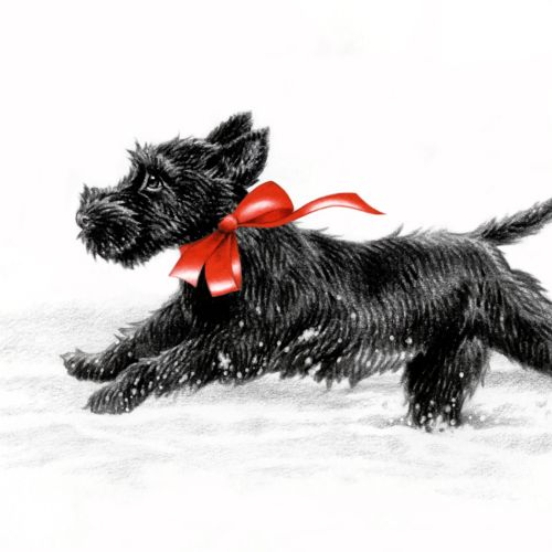 Black Dog - Animal Illustration