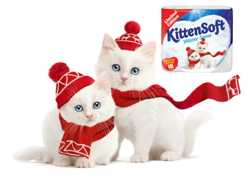 Illustration For KittenSoft Product