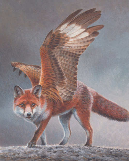 Flying fox oil painting by Andrew Hutchinson
