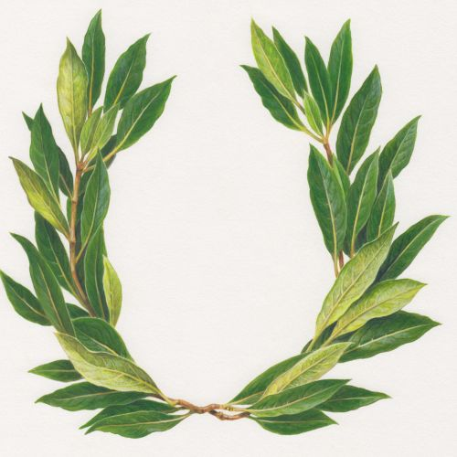 Realistic art of laurel wreath
