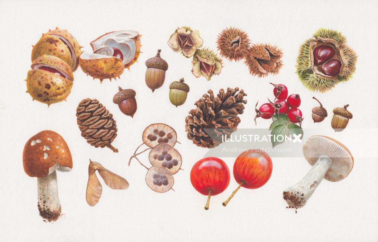 woodland fruit