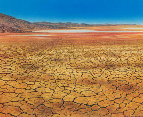 Dry landscape illustration